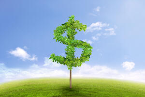 Financial growth and success on green summer natural green grass landscape with a single tree in the shape of dollar sign. Business concept of growing prosperity and investments